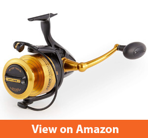 Penn Spinfisher V & VI Spinning Fishing Reel