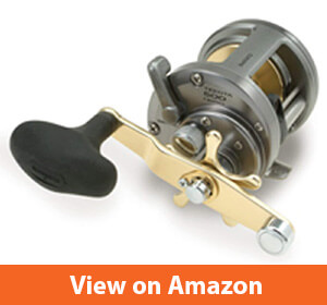 Best Catfish Reels