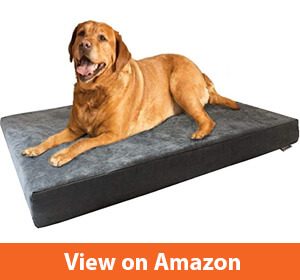 Dogbed4less Orthopedic Gel Cooling dog bed